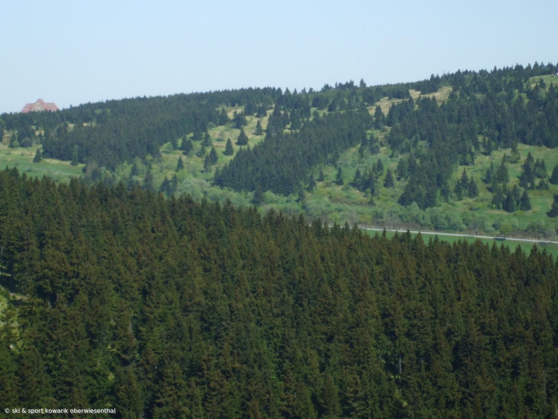 Die Sachsenbaude lugt zwischen den Fichten des Kleinen Fichtelberges hervor (c) Ski und Sport Jana Kowarik Oberwiesenthal