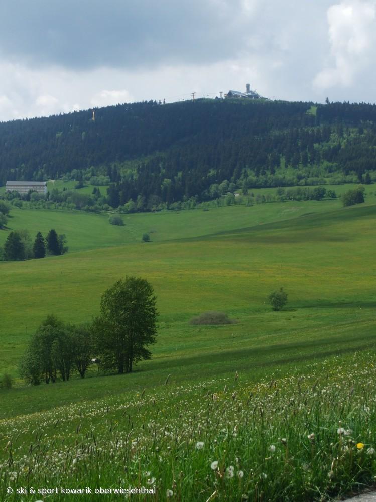 Herrliche Sommerwiesen am Fichtelberg (c) Ski und Sport Jana Kowarik Oberwiesenthal