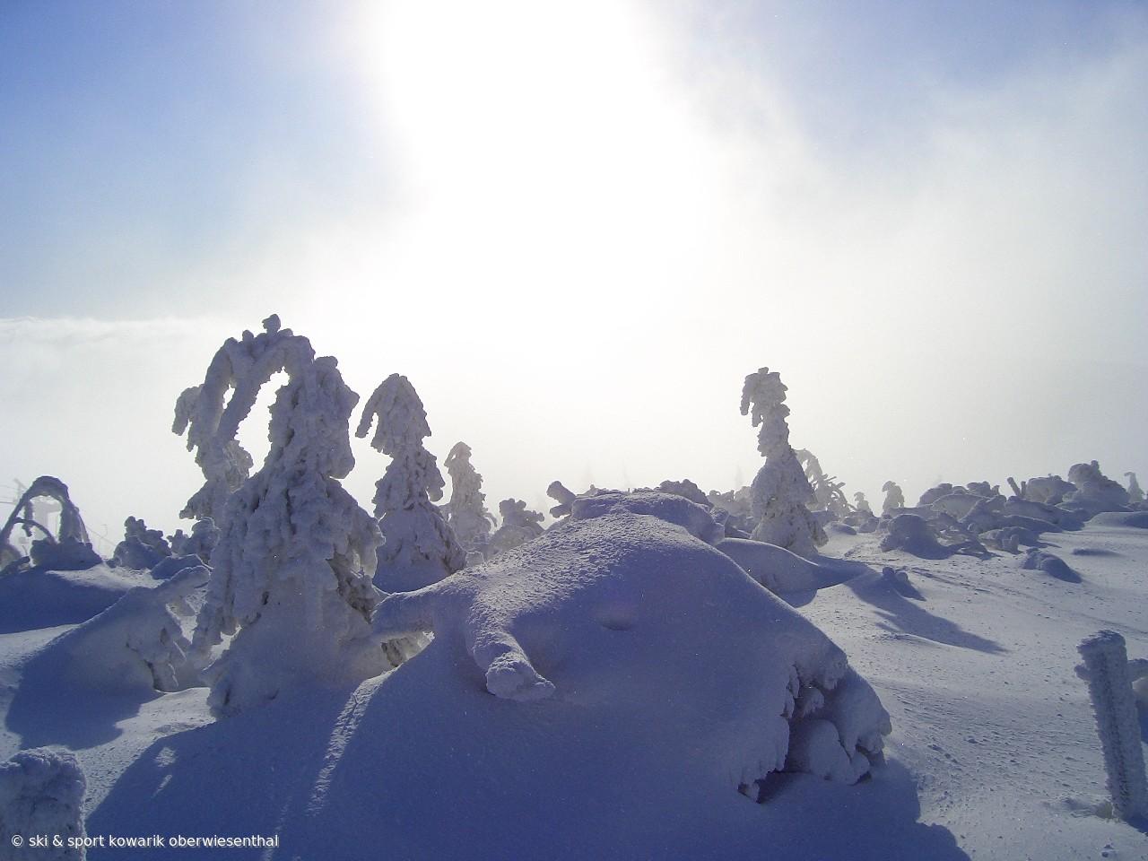 Winter in Oberwiesenthal - Einfach ein Traum! (c) Ski und Sport Jana Kowarik Oberwiesenthal